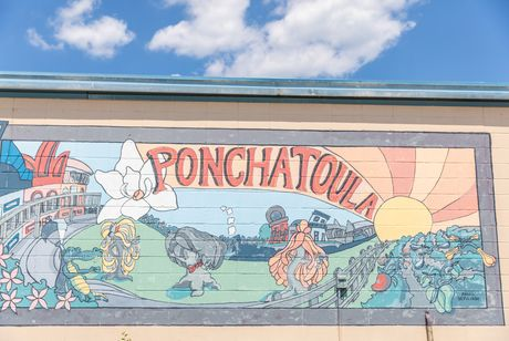 Image for Ponchatoula