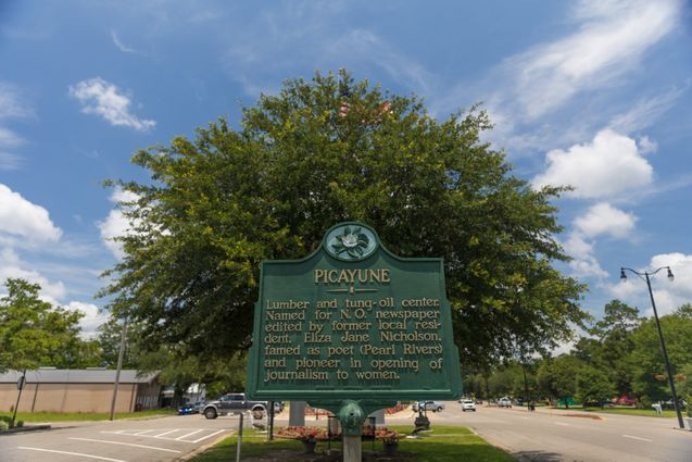 Picayune Real Estate - Photo 4