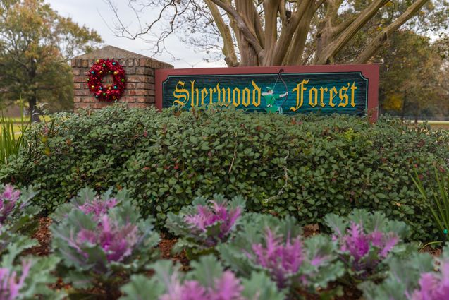 Sherwood Forest/Broadmoor Homes for Sale - Photo 1