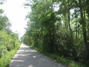 4C ISAAC Road - Image 6