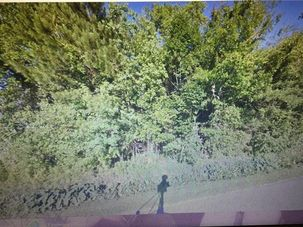 00000 ALMONASTER Road Slidell, LA 70458 - Image 3