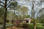 27099 JIM HUGH Lane Bush, LA 70431 - Image 16