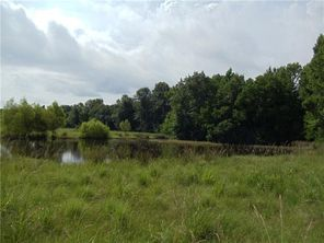 53 Acres COWART & A CRAWFORD Road - Image 4