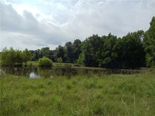 53 Acres COWART & A CRAWFORD Road Bush, LA 70431 - Image 3