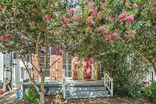 1830 CONSTANTINOPLE Street New Orleans, LA 70115 - Image 2