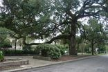 3300 ST CHARLES Avenue #9 New Orleans, LA 70115 - Image 12