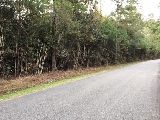 Photo of Lot 51 HOSMER MILL Road Covington, LA 70435