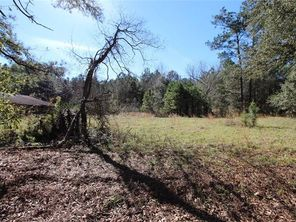 14214 FRED CLARK Road - Image 6
