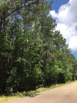 10.75 Acres HWY 40 Highway Folsom, LA 70437