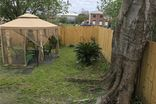 2915 PHILIP Street New Orleans, LA 70113 - Image 8