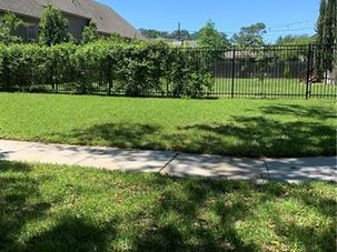 6918 CATINA Street New Orleans, LA 70124 - Image 3