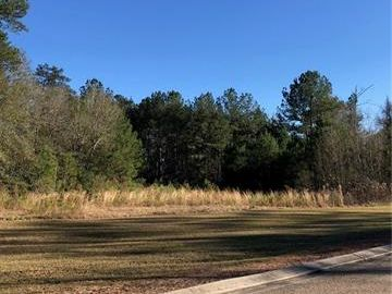 Lot RC-8A ABITA OAKS Boulevard Abita Springs, LA 70420