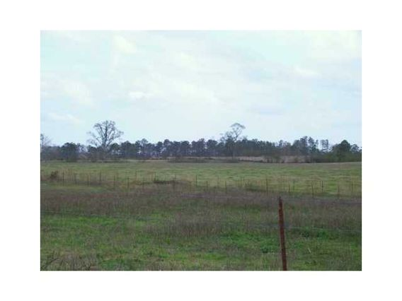 54163 SWEETWATER RD Independence, LA 70443