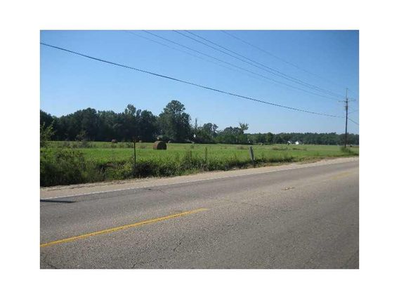 46375 E HWY 190 / MYERS Road - Photo 2