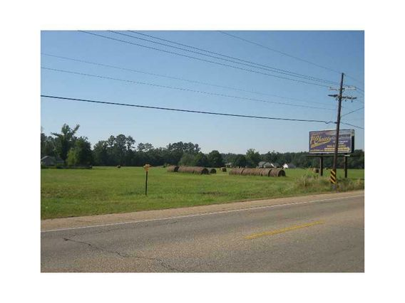 46375 E HWY 190 / MYERS Road - Photo 3