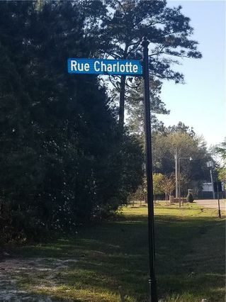 RUE CHARLOTTE Road - Photo 2