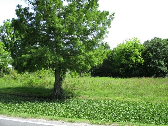 Tract 2A BAYOU Road - Photo 2