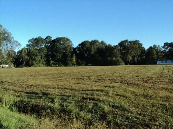 51 Acres N MASHON Road Independence, LA 70443