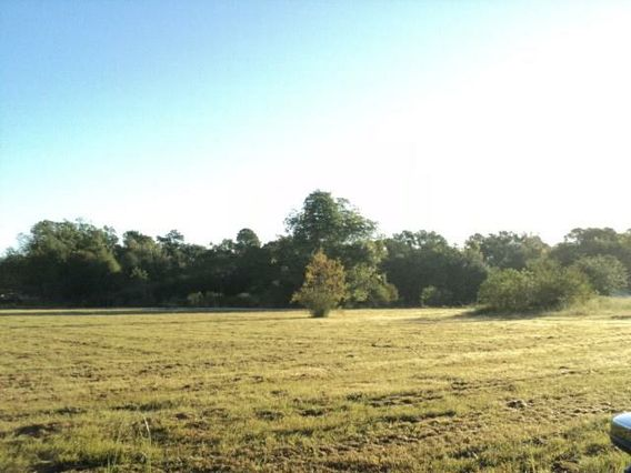 51 Acres N MASHON Road - Photo 2