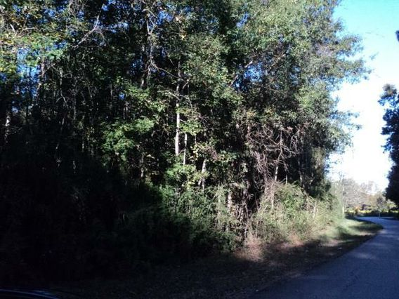 7 Acres N MASHON Road Independence, LA 70443