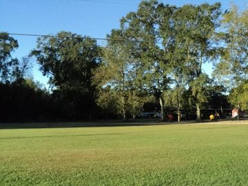 6 Acres MASHON Road Independence, LA 70443