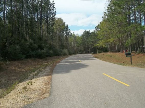 23288 DAVIS BRANCH Road - Photo 2