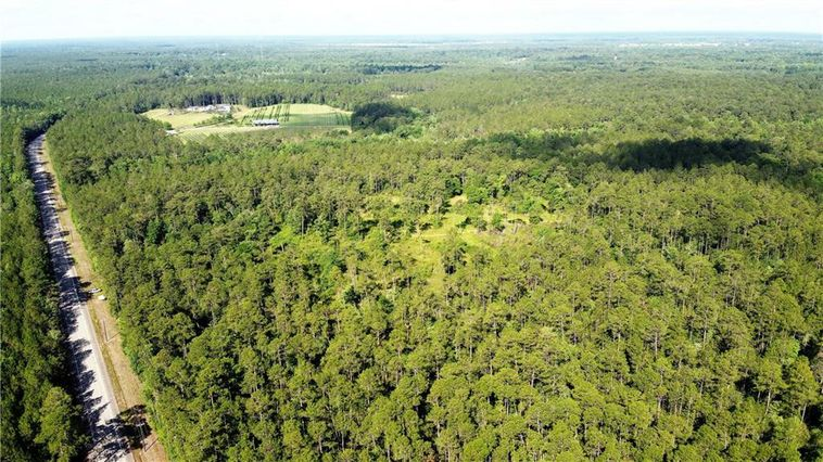 188 Acres 21 Highway Bush, LA 70431
