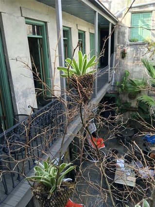 2600 CHARTRES Street - Photo 2