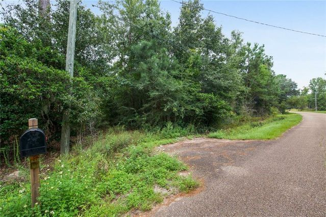 56160 RED MILL Drive - Photo 3