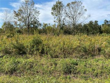 lot 4 blk 9 E 25TH Street Larose, LA 70373