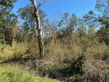 lot 4 blk 10 E 25TH Street Larose, LA 70373