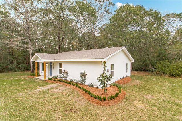 23287 SILVER SPRINGS Drive - Photo 3