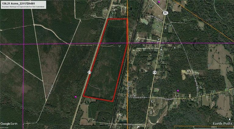 136 Acres 21 Highway - Photo 2