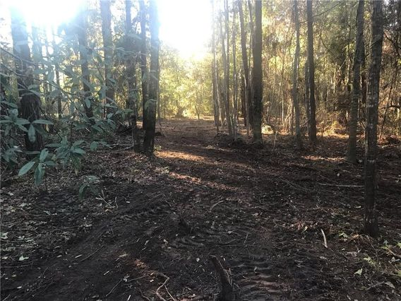 5.818 Acres JIM TALLEY Road - Photo 2