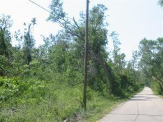 Lot 1 ISAAC Road - Photo 2